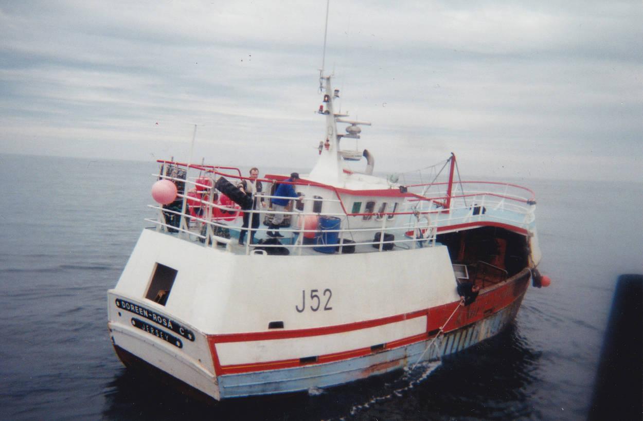 Doreen rosa j52