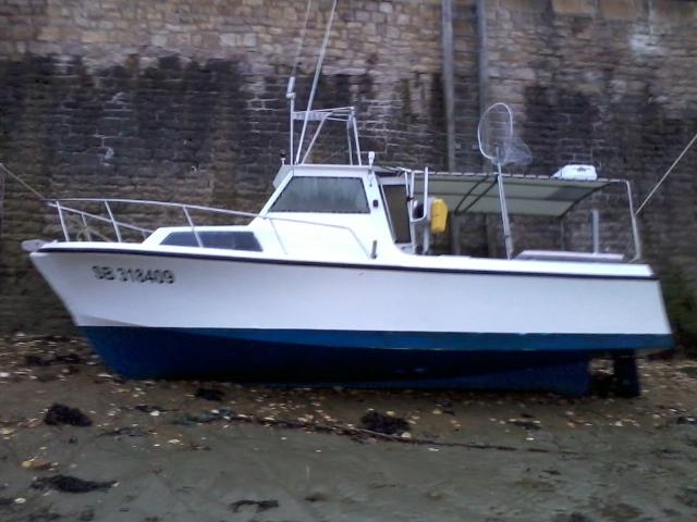 Enzo sb318409