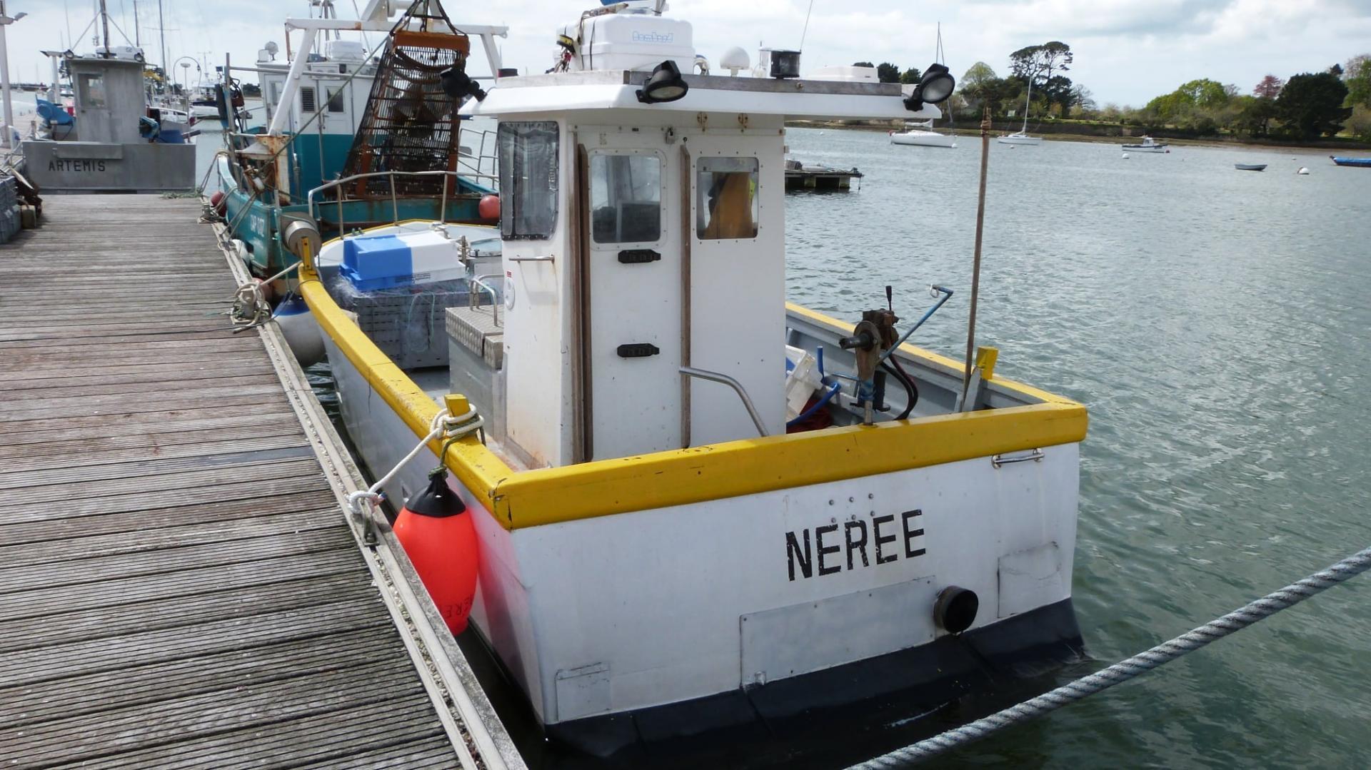 Neree cc642461 fabrice roperch