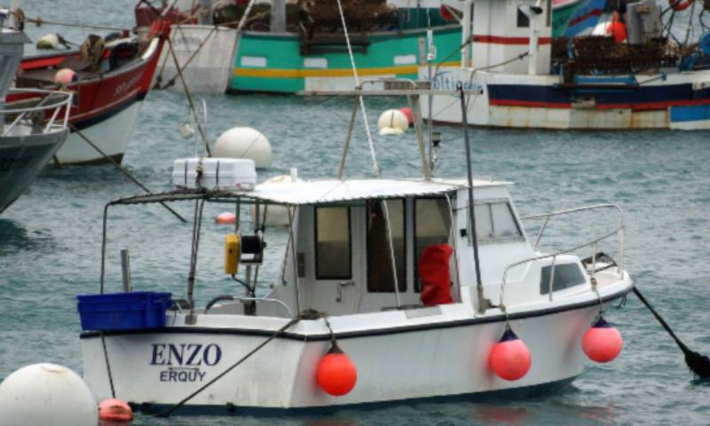 Enzo (SB318409)